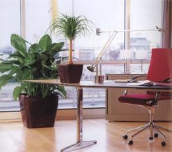 Officeandgeneralu0027s Blog   WordPress.com